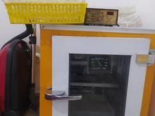 دستگاه جوجه کشی در شیپور