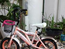 دوچرخه سایز 12 TPT در شیپور