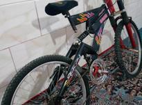 دوچرخه 26 فلش تنه بلند در شیپور-عکس کوچک