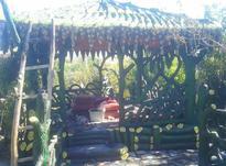 ساخت آلاچیق باربی کیو باقمت مناسب در شیپور-عکس کوچک