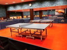 آموزش تخصصی تنیس روی میز ( پینگ پنگ) در شیپور