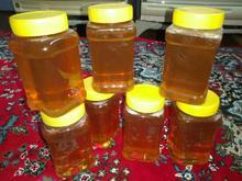 عسل صددرصد طبیعی در شیپور