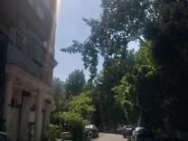 فروش آپارتمان 240 متر در نیاوران در شیپور