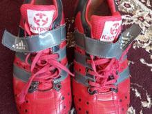 کفش وزنه برداری در شیپور