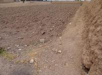 زمین کشاوری و مسکونی در شیپور-عکس کوچک