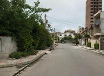 فروش زمین مسکونی 300 متر در سرخرود دوکله در شیپور-عکس کوچک
