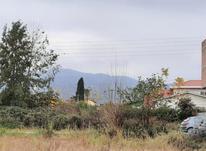لتینگان 440 متری زمین شرایطی منطقه غیر بومی ویو تک در شیپور-عکس کوچک