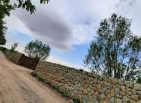 فروش قواره باغ 500متر به بالا در جابان در شیپور-عکس کوچک