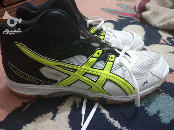 کفش آسیکس اورجینال سایز 45 در گروه خرید و فروش لوازم شخصی در خراسان رضوی در شیپور-عکس3