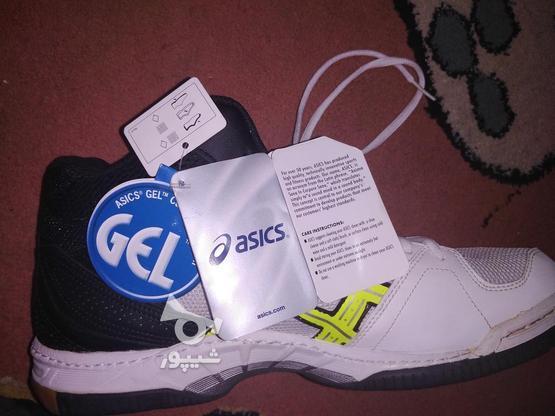 کفش آسیکس اورجینال سایز 45 در گروه خرید و فروش لوازم شخصی در خراسان رضوی در شیپور-عکس1