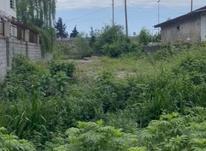 فروش زمین مسکونی 2700 متر در نوشهر در شیپور-عکس کوچک
