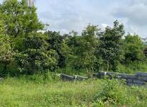 فروش زمین مسکونی 280 متر در تنکابن در شیپور-عکس کوچک
