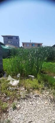 زمین داخل بافت مسکونی 233 متر در چالوس در گروه خرید و فروش املاک در مازندران در شیپور-عکس1