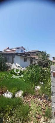 زمین داخل بافت مسکونی 233 متر در چالوس در گروه خرید و فروش املاک در مازندران در شیپور-عکس2