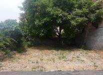 زمین مسکونی 160 متری سند دار در شیپور-عکس کوچک