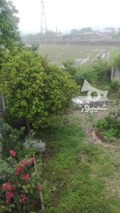 ویلا || 137متر || 2خواب || 260متر زمین || شیرگاه در گروه خرید و فروش املاک در مازندران در شیپور-عکس8