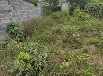 فروش زمین کشاورزی 260 متر در سعدی در شیپور-عکس کوچک
