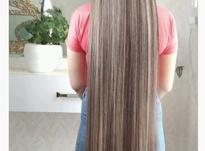 رنگ مو وکراتینه مو در شیپور-عکس کوچک