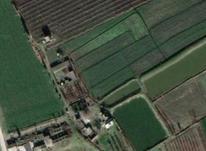 فروش زمین صنعتی و کشاورزی در شیپور-عکس کوچک
