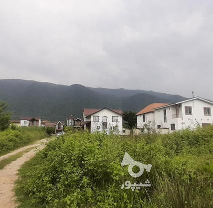 فروش زمین مسکونی 430 متر در نوشهر در گروه خرید و فروش املاک در مازندران در شیپور-عکس4