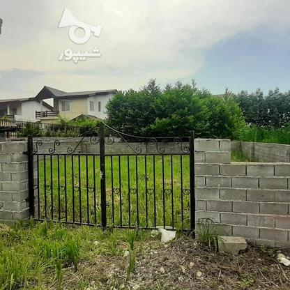 فروش زمین مسکونی 250 متر در نوشهر در گروه خرید و فروش املاک در مازندران در شیپور-عکس3