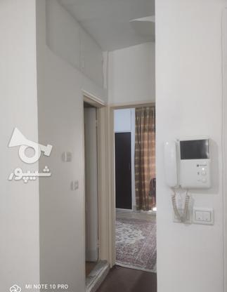 فروش آپارتمان 44 متر در هفت چنار در گروه خرید و فروش املاک در تهران در شیپور-عکس10