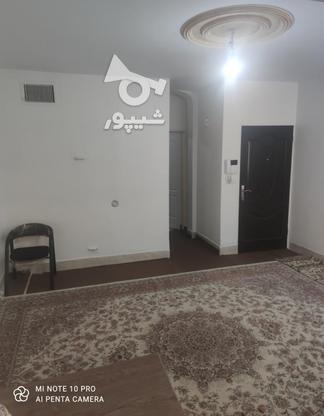 فروش آپارتمان 44 متر در هفت چنار در گروه خرید و فروش املاک در تهران در شیپور-عکس3