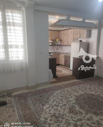 فروش آپارتمان 44 متر در هفت چنار در گروه خرید و فروش املاک در تهران در شیپور-عکس5