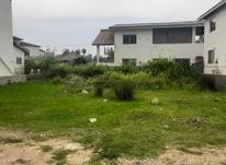 فروش زمین مسکونی 430 متر در نوشهر در شیپور-عکس کوچک