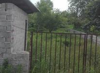 فروش زمین مسکونی 260 متر در چالوس در شیپور-عکس کوچک