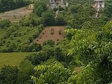 فروش زمین مسکونی مخصوص ویلا ویو عالی در شیپور