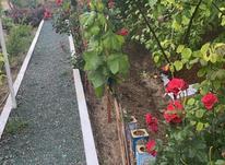 باغ ویلا در روستای آهوان در شیپور-عکس کوچک