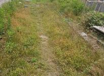 فروش زمین کشاورزی 300 متر در لاهیجان در شیپور-عکس کوچک