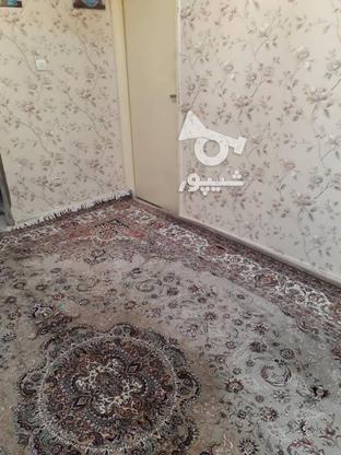 60متر 2خواب/ 3نبش غرق نور/ استادمعین در گروه خرید و فروش املاک در تهران در شیپور-عکس4