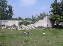 فروش زمین مسکونی 2000 متر روستای نازکسرا در شیپور-عکس کوچک