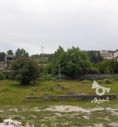 فروش زمین مسکونی 416 متر در نوشهر در گروه خرید و فروش املاک در مازندران در شیپور-عکس3