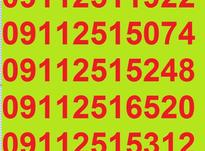 0911.251.15.31 در شیپور-عکس کوچک
