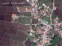 زمین مسکونی 257 متری سند دار در شیپور