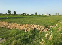 فروش زمین مسکونی 200 متر در سرخرود مناسب ساخت ویلا در شیپور-عکس کوچک
