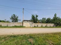 زمین 3300متری مسکونی جاده کیاکلا روستا آهنگرکلا در شیپور-عکس کوچک