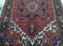 فرش دستبافت شش متری در شیپور-عکس کوچک