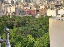 قیطریه.... پارک.... 181متر در شیپور-عکس کوچک
