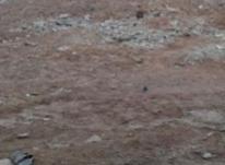 200متر زمین،دارای سند مادر ،سلیمانی 4(آزادی) در شیپور-عکس کوچک
