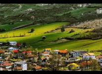 زمین شهرکی بهترین منطقه کلاردشت در شیپور-عکس کوچک