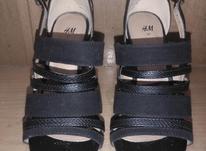 کفش مجلسی H M در شیپور-عکس کوچک