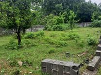 فروش زمین مسکونی 205 متر در آمل در شیپور
