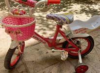 دوچرخه تمیز در حد سایز 12 در شیپور-عکس کوچک