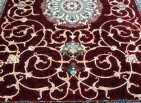 فرش دربار کاشان، لاکی (قرمز) 6 متری 700 شانه تمام نخ در شیپور-عکس کوچک