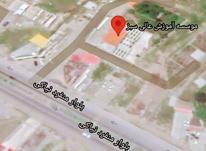 فروش زمین تجاری 256 متری در بلوار منفرد امیر فرد در شیپور-عکس کوچک