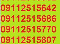 0911.251.58.07 در شیپور-عکس کوچک